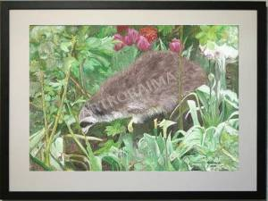 Raccoon in the Garden - Acrylic