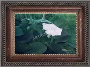 White Datura - Acrylic